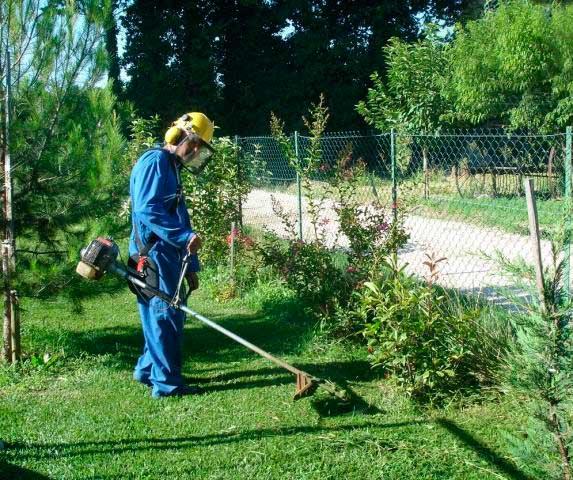 Quels v tements de travail pour l entretien des espaces verts groupe protect 39 homs for Recherche jardinier pour entretien jardin